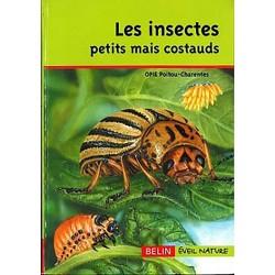 Les Insectes petits mais costauds
