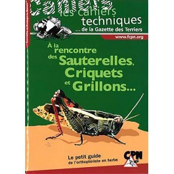 A La Rencontre des - Sauterelles,