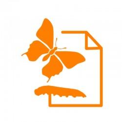 Fiches d'élevage Papillons