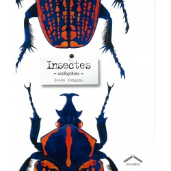 Insectes - colèoptères -