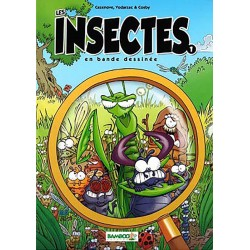 LES INSECTES 1