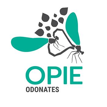 Logo Odonates